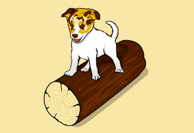 Dog on a Log Book Series