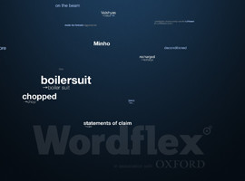 WordFlex Touch Dictionary